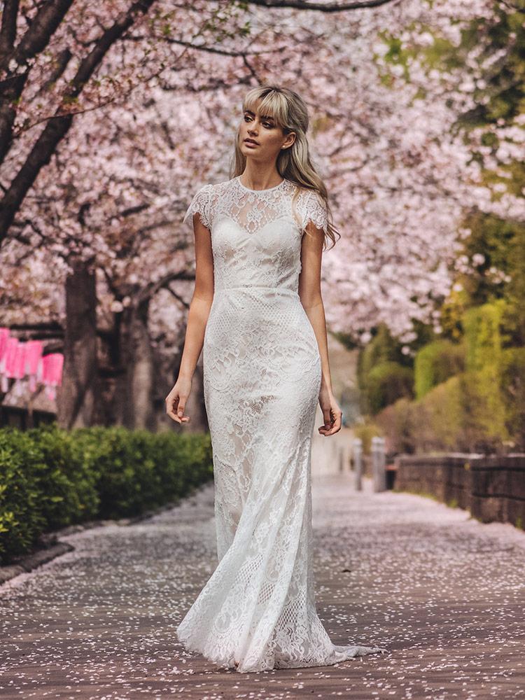 Catherine Deane dresses